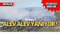 Antalya yanıyor! Müdahale sürüyor