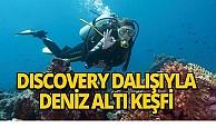 Discovery dalışıyla deniz heyecanını yaşayın