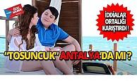 Tosuncuk Antalya'da mı?
