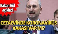 Adalet Bakanı Gül'den koronavirüs açıklaması