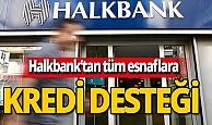 Halkbank'tan tüm esnaf ve sanatkarlara kredi desteği