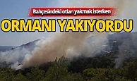 Otları yakmak isterken ormanı yakıyordu