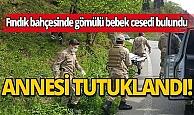 Trabzon'da fındık bahçesinde gömülü bebek cesedi bulundu!