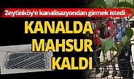 Zeytinköy'e kanalizasyondan girmeye çalışınca kapana sıkıştı