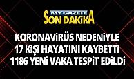 Türkiye'de 2 Temmuz günü koronavirüs nedeniyle 17 kişi vefat etti, 1186 yeni vaka tespit edildi