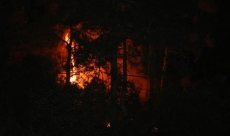 Kemer'de yangın paniği