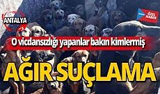 Antalya'da o vicdansızlığı yapanlar bakın kimlermiş