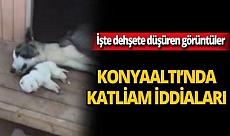 Konyaaltı'nda katliam iddiaları!