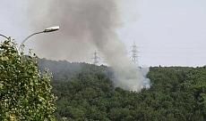Son dakika: İstanbul'da orman yangını