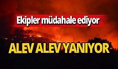 Balıkesir'de yangın!