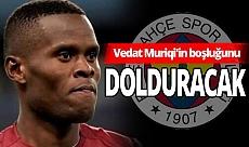 Son Dakika: Fenerbahçe, Vedat Muriqi'in boşluğunu doldurdu