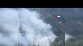 Akseki'deki orman yangını