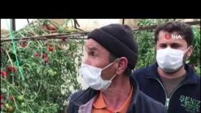 Antalya'da gözleri önünde seralarını yok oldu