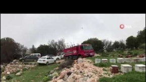 Antalya'daki yangın arı kovanlarını da vurdu