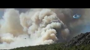 Kumluca'da ormanlık alanda yangın!