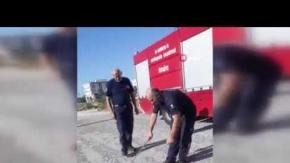 Yılanı öldüren itfaiye görevlisine tepki yağdı!