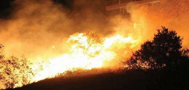 Samsun'da korkutan yangın