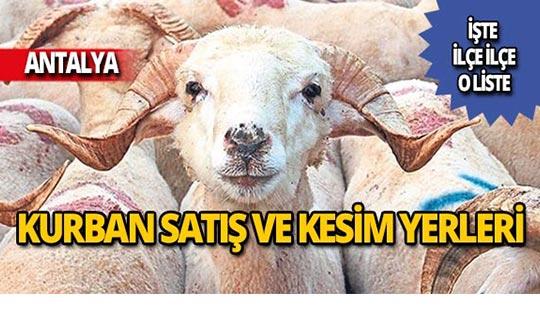 Antalya 2019 yılı kurban satış ve kesim yerleri