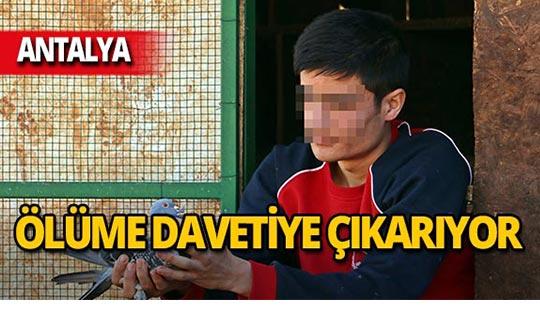 Antalya'da bonzainin gerçek yüzünü anlattılar!
