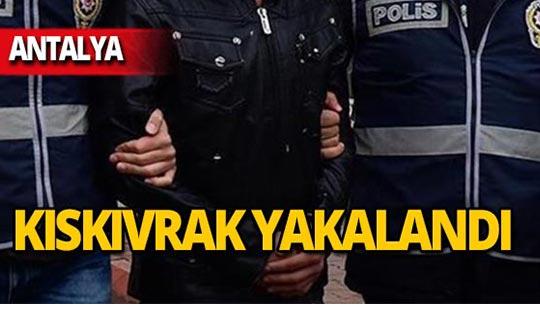 Antalya'da 'encoder' cihazıyla vurgun!