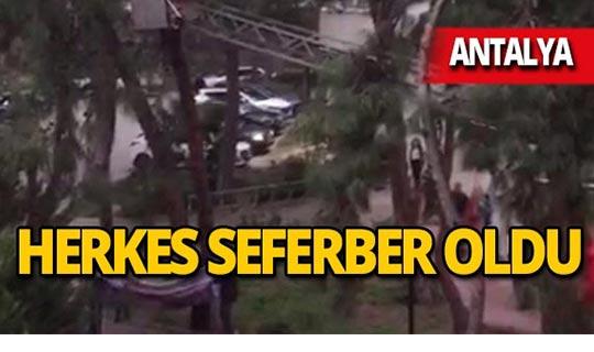 Antalya'da herkes yardıma koştu!