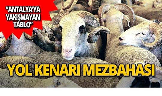 Antalya'da ilkel tablo!