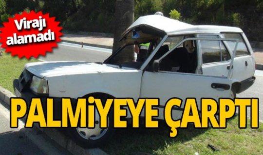 Antalya haber:  Ehliyetsiz sürücü palmiyeye çarptı
