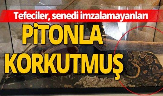 Antalya haber: Tefeciler, senedi imzalamayanların üzerine piton bırakmışlar