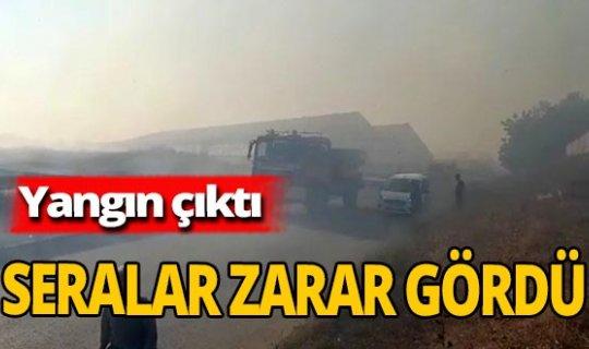 Antalya haber: Alev alev yandı