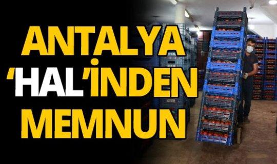 Antalya halinde ürün bolluğu yaşanıyor