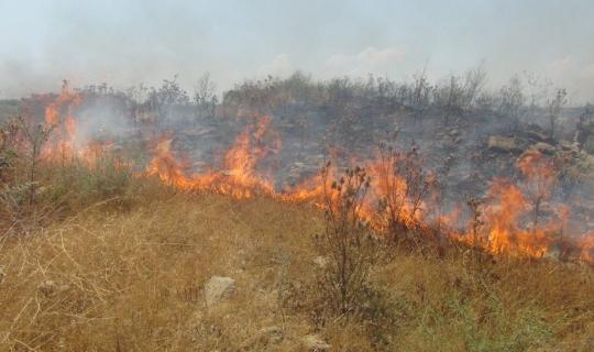 Antalya'da cezaevi inşaatı yakınında 3 buçuk dönüm arazi yandı