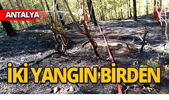 Çamlık alanda yangın!