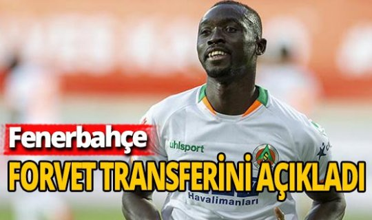Fenerbahçe, Papiss Cisse'yi transfer etti!