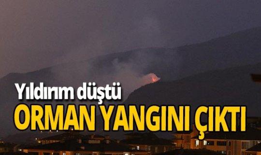 Karabük'te yangın!
