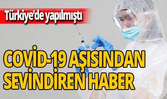Türkiye'deki koronavirüs aşısında yeni gelişme!