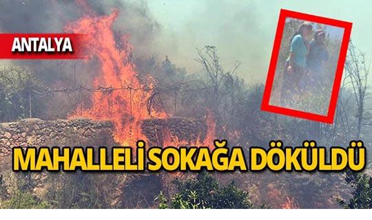 Yangın mahalleyi sardı!