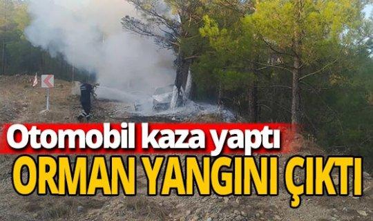 Orman yangınına neden olan trafik kazası