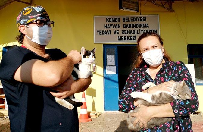 Kemer Belediyesi Sağlık İşleri Müdürlüğü ve Veteriner Hekimliği'nden zehirlenen kedi ve tavuklarla ilgili açıklama