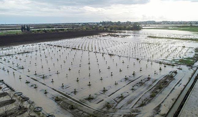 Antalya'daki selin hasar tespit çalışmaları sürüyor