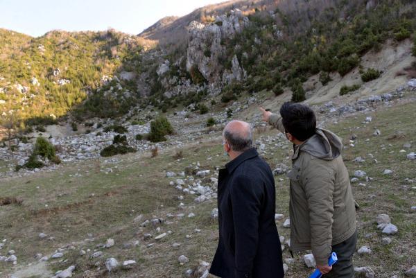 Köylüler topladıkları defneden günlük 500 lira kazanıyorlar