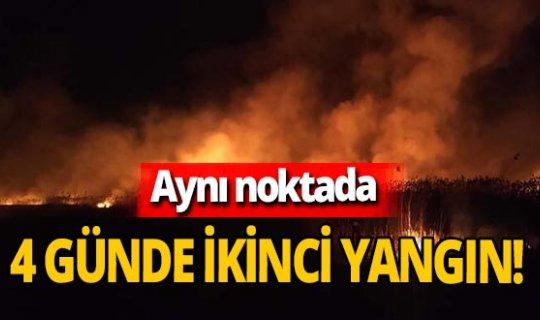 Afyonkarahisar'da aynı noktada 4 günde ikinci yangın! İnceleme başlatıldı