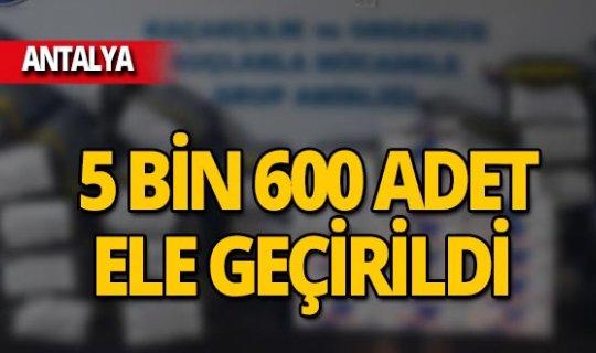 Alanya'da kaçak tütün operasyonu! 5 bin 600 adet makaron ele geçirildi
