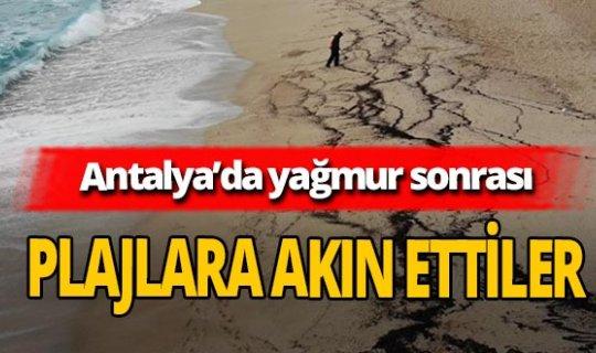 Antalya'da sağanak yağış sonrası defineciler plajlara akın etti