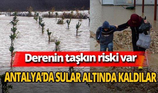 Antalya'da tarım alanları ve seralar, sular altında kaldı