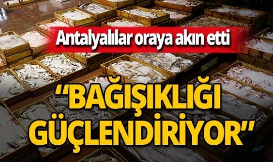 Antalya haber: Antalya Balıkçı Barınağı'nda hareketlilik başladı