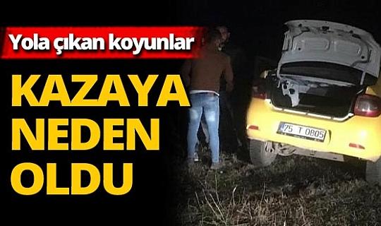 Ardahan'da feci kaza! Ölü ve yaralılar var