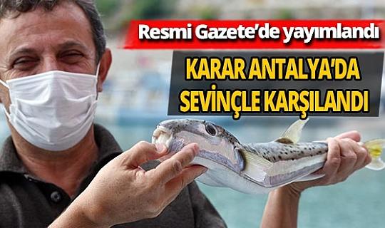 Balon balığının kuyruğunu getirene 5 lira kampanyası Antalya'da sevinçle karşılandı