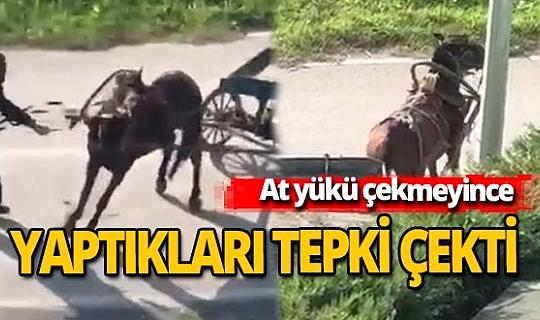 Bursa'da arkasındaki yükü çekmekte zorlanan ata yapılan eziyet tepki çekti