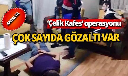 'Çelik Kafes' operasyonunda 50 şüpheli gözaltına alındı