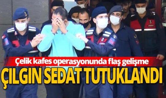 'Çelik kafes' operasyonunda tutuklu sayısı 54'e yükseldi